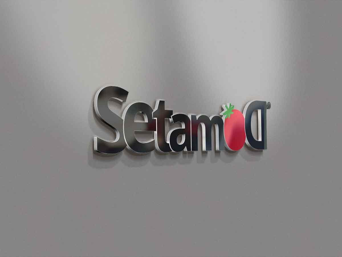 SETAMOD